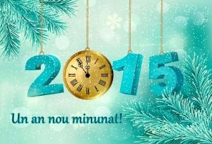 2015 minunat